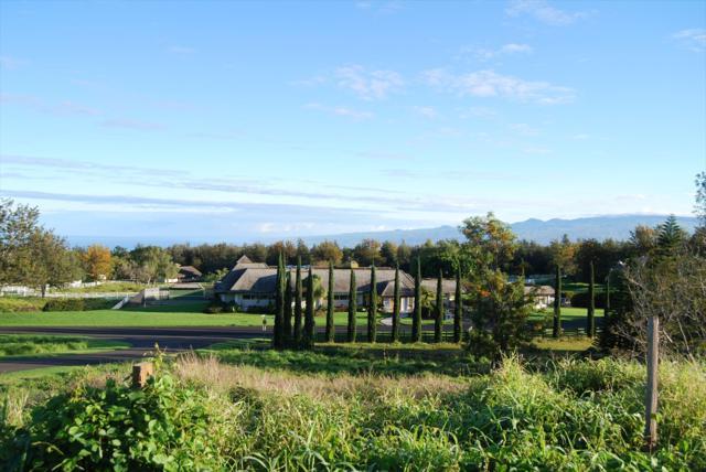 Puu Napoo Drive, Kailua-Kona, HI 96740 (MLS #616410) :: Elite Pacific Properties