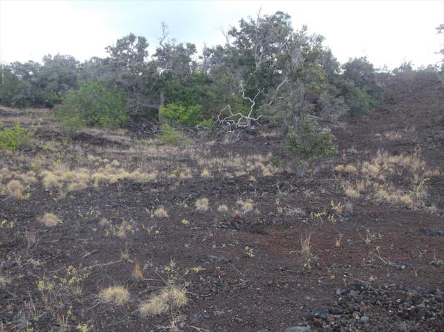 Jasmine Dr, Ocean View, HI 96737 (MLS #616414) :: Aloha Kona Realty, Inc.