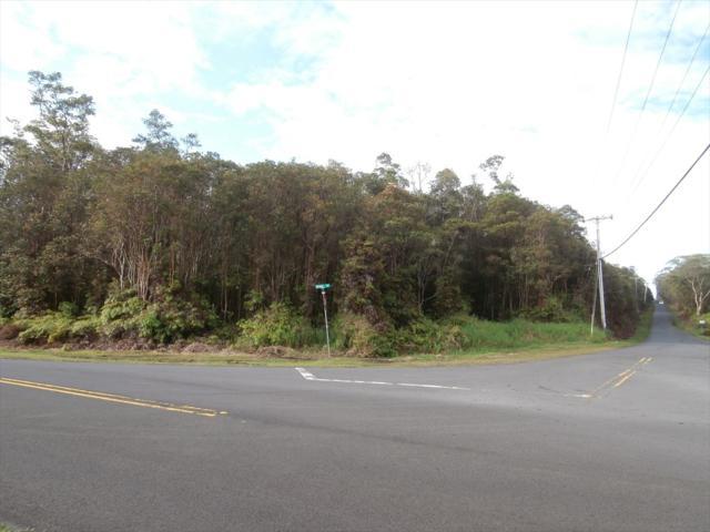 N Kulani Rd, Mountain View, HI 96778 (MLS #616570) :: Elite Pacific Properties