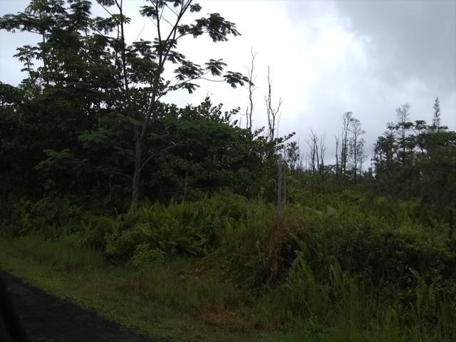 Ilima St, Keaau, HI 96749 (MLS #616611) :: Aloha Kona Realty, Inc.