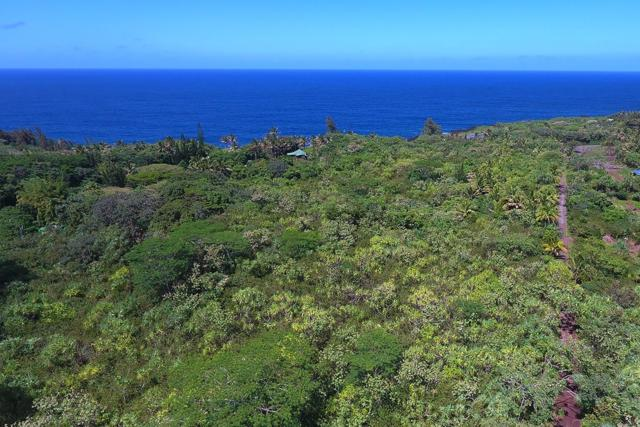Government Beach Rd, Pahoa, HI 96778 (MLS #616670) :: Aloha Kona Realty, Inc.