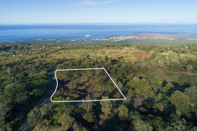 75-5424 Nanaina Pl Lot19, Holualoa, HI 96725 (MLS #616692) :: Elite Pacific Properties