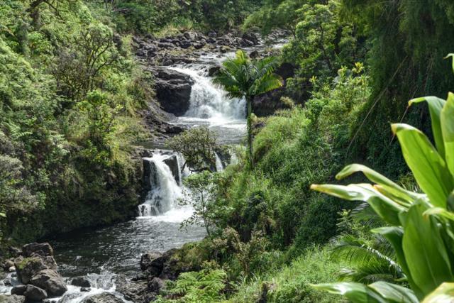 20 Puueo Mauka Dr, Hilo, HI 96720 (MLS #616714) :: Aloha Kona Realty, Inc.