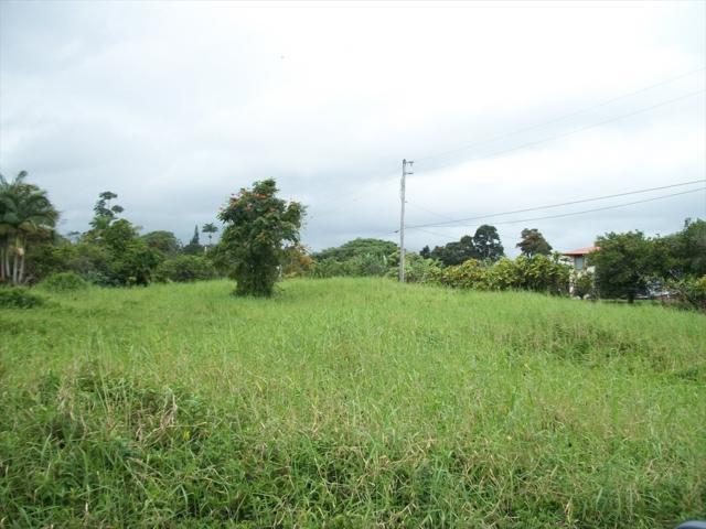 Address Not Published, Hilo, HI 96720 (MLS #616731) :: Aloha Kona Realty, Inc.