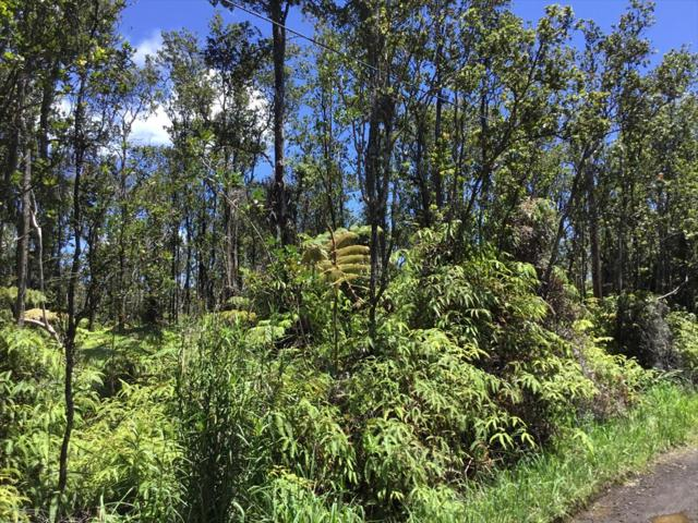 Address Not Published, Volcano, HI 96785 (MLS #616743) :: Aloha Kona Realty, Inc.