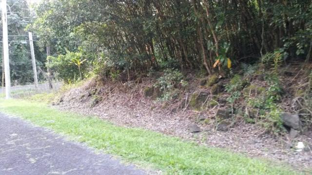 S Moi St, Pahoa, HI 96778 (MLS #616772) :: Aloha Kona Realty, Inc.