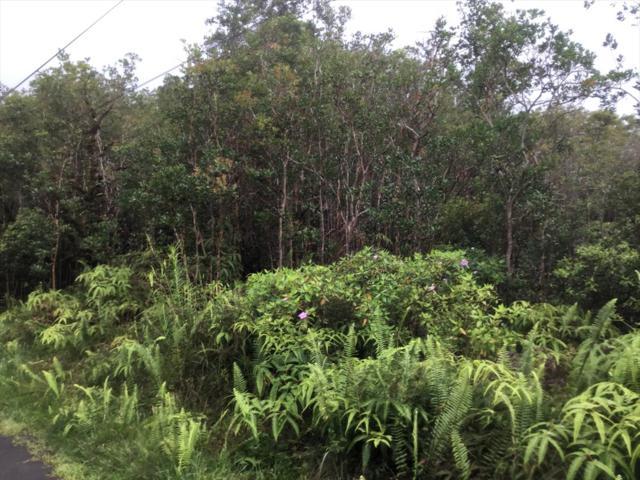 Road 5 (Uau), Kurtistown, HI 96771 (MLS #616825) :: Aloha Kona Realty, Inc.