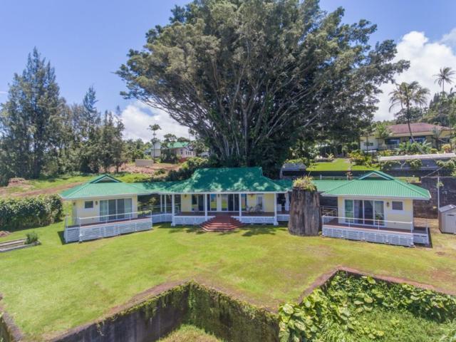 35-108 Lanikai Pl, Laupahoehoe, HI 96764 (MLS #616829) :: Elite Pacific Properties