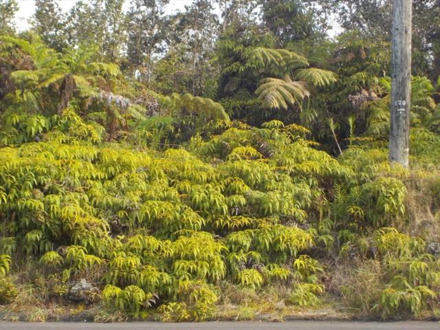 11-3211 Volcano Road, Volcano, HI 96785 (MLS #616884) :: Elite Pacific Properties