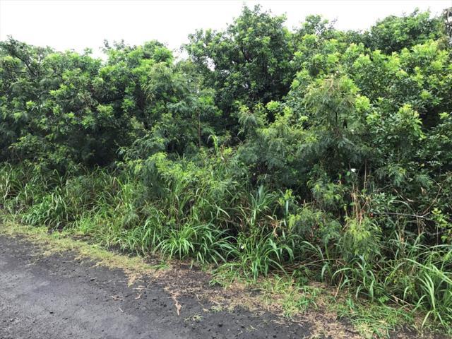 Makai St, Naalehu, HI 96772 (MLS #616932) :: Elite Pacific Properties