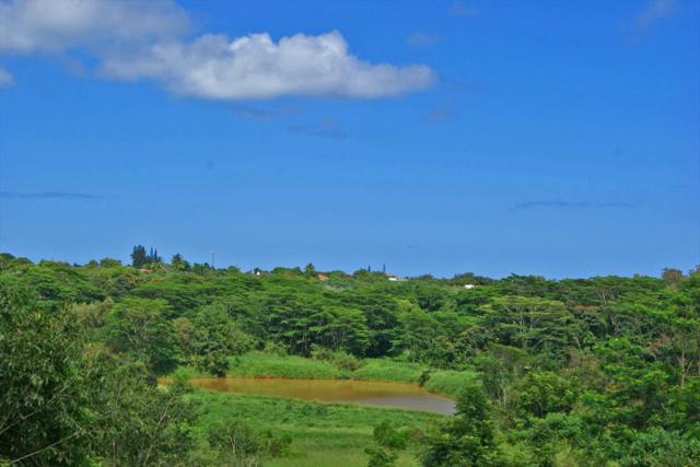 Address Not Published, Kapaa, HI 96746 (MLS #616950) :: Kauai Exclusive Realty