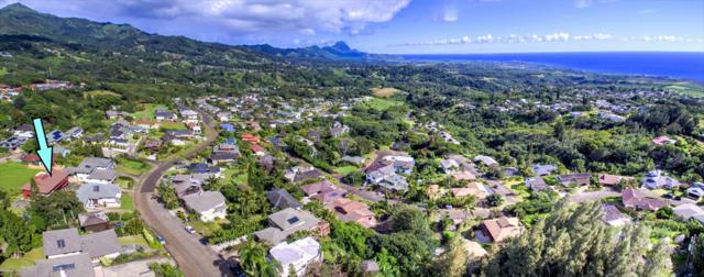 4295 Kai Ikena Dr, Kalaheo, HI 96741 (MLS #617026) :: Kauai Exclusive Realty