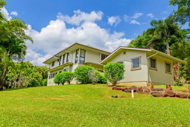6213 Kahiliholo Rd, Kilauea, HI 96754 (MLS #617042) :: Kauai Exclusive Realty