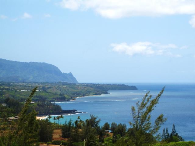 Makana'ano Pl, Kilauea, HI 96754 (MLS #617054) :: Aloha Kona Realty, Inc.