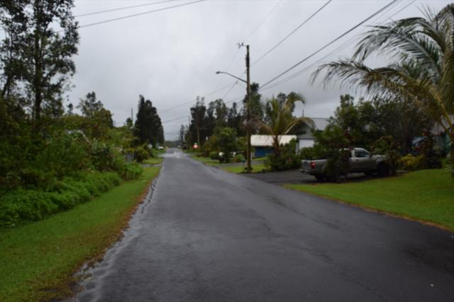 Leonaka Rd, Mountain View, HI 96771 (MLS #617160) :: Aloha Kona Realty, Inc.