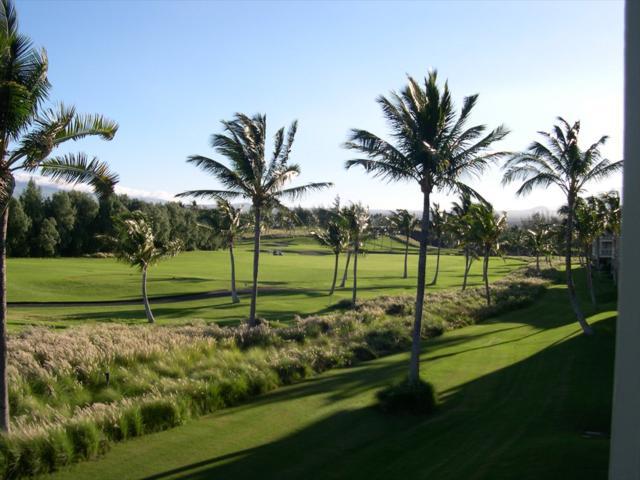 69-200 Pohakulana Pl, Waikoloa, HI 96738 (MLS #617178) :: Elite Pacific Properties