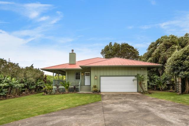 65-1397-A Kawaihae Rd, Kamuela, HI 96743 (MLS #617210) :: Elite Pacific Properties