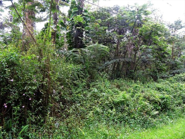 Paradise Rd, Pahoa, HI 96778 (MLS #617257) :: Elite Pacific Properties