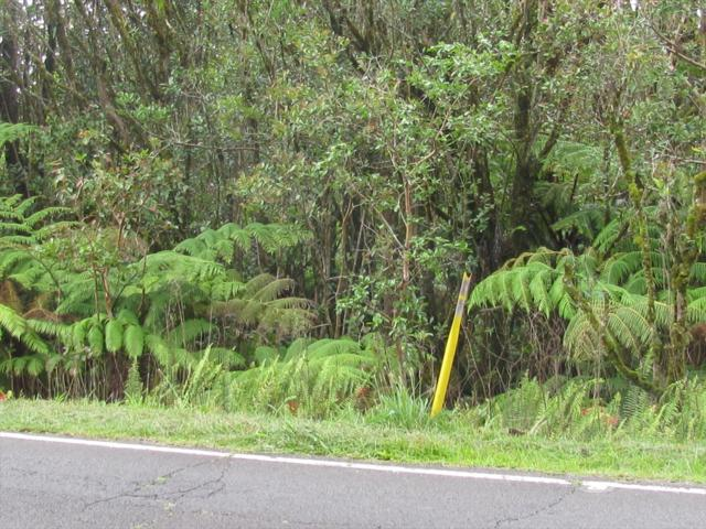2181 Kaumana Dr, Hilo, HI 96720 (MLS #617274) :: Aloha Kona Realty, Inc.