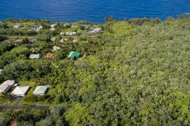 15-2819 Puhi St, Pahoa, HI 96778 (MLS #617487) :: Aloha Kona Realty, Inc.