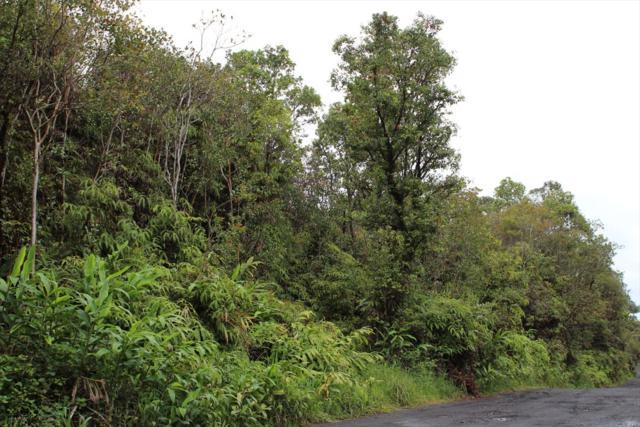Ihope Rd, Mountain View, HI 96771 (MLS #617544) :: Elite Pacific Properties