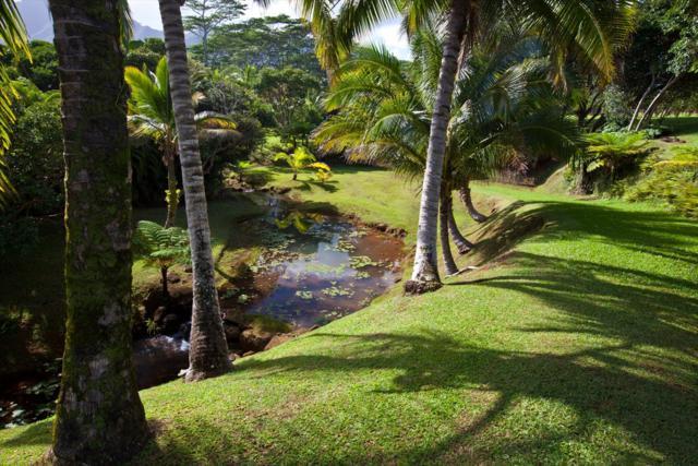 6040-C Kahiliholo Rd, Kilauea, HI 96754 (MLS #617590) :: Aloha Kona Realty, Inc.