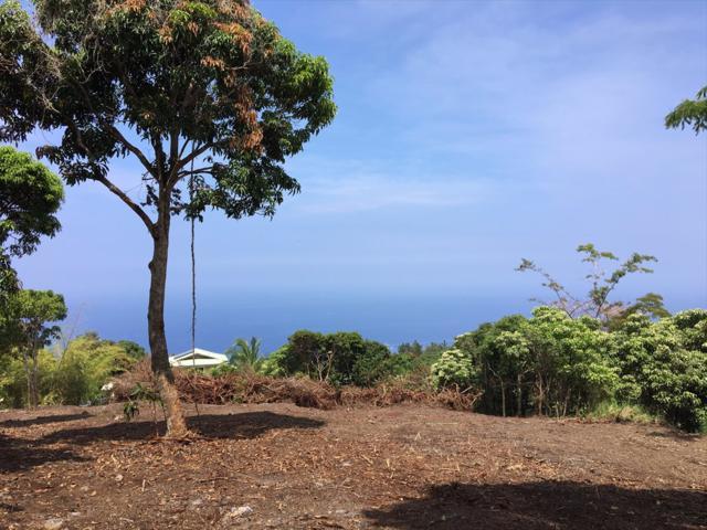 Address Not Published, Captain Cook, HI 96704 (MLS #617622) :: Elite Pacific Properties