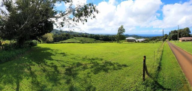 4972-A Kikala Rd, Kalaheo, HI 96741 (MLS #617626) :: Kauai Exclusive Realty
