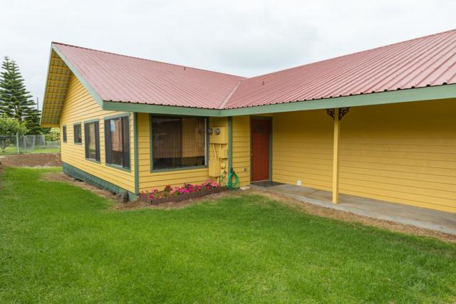 64-5165 Kinohou St, Kamuela, HI 96743 (MLS #617653) :: Elite Pacific Properties