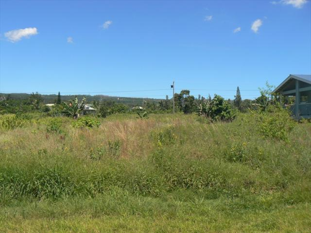 Kehauopuna St, Pahoa, HI 96778 (MLS #617697) :: Elite Pacific Properties