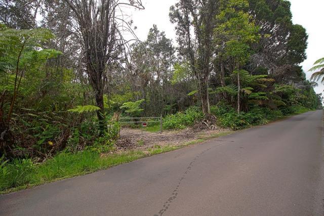 Haunani Rd, Volcano, HI 96785 (MLS #617737) :: Elite Pacific Properties
