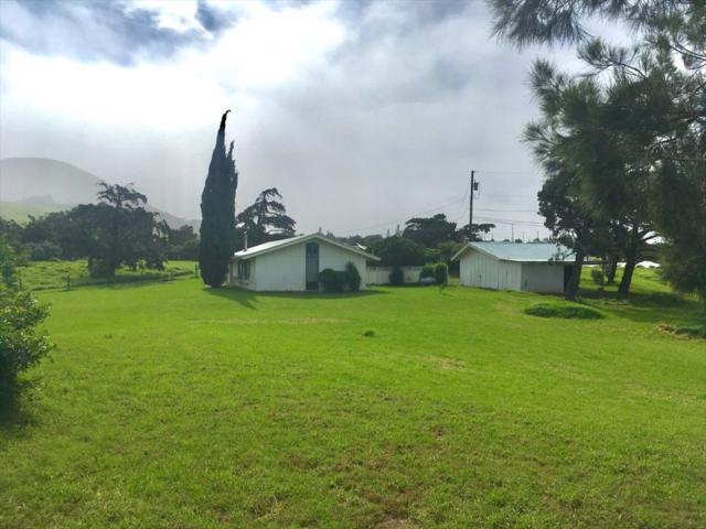 65-1600 Kawaihae Rd, Kamuela, HI 96743 (MLS #617738) :: Aloha Kona Realty, Inc.