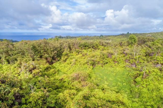 Address Not Published, Papaaloa, HI 96780 (MLS #617778) :: Elite Pacific Properties
