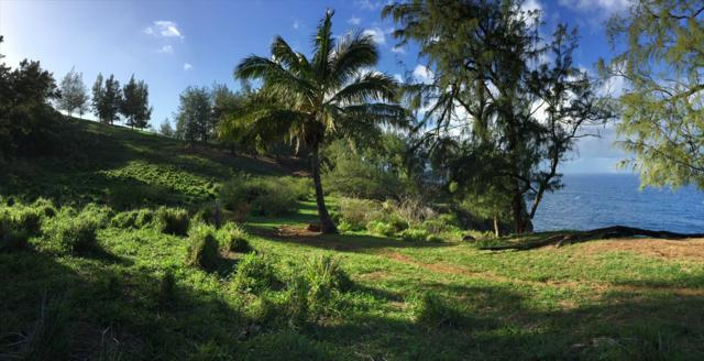 Address Not Published, Honokaa, HI 96727 (MLS #617818) :: Elite Pacific Properties