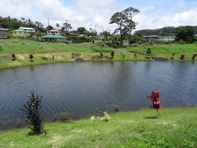 3560 Loko Place, Hilo, HI 96720 (MLS #617927) :: Elite Pacific Properties