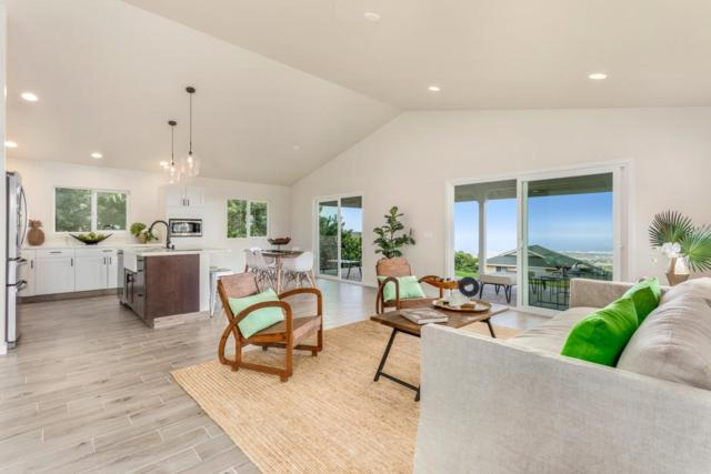 73-1060 Mala Pua Ct, Kailua-Kona, HI 96740 (MLS #617948) :: Elite Pacific Properties