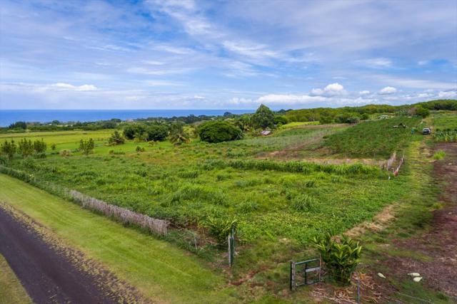 Kaupakuea Rd., Hilo, HI 96783 (MLS #617961) :: Elite Pacific Properties