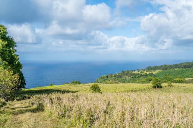 Pali Nana Road, Papaaloa, HI 96780 (MLS #618049) :: Aloha Kona Realty, Inc.