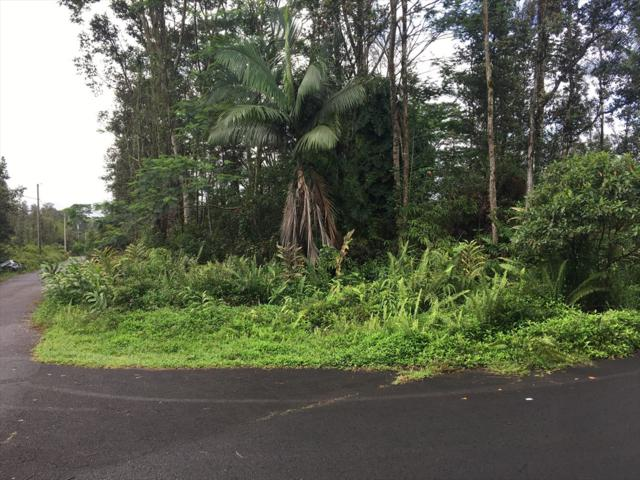 Brookover St, Keaau, HI 96749 (MLS #618073) :: Aloha Kona Realty, Inc.