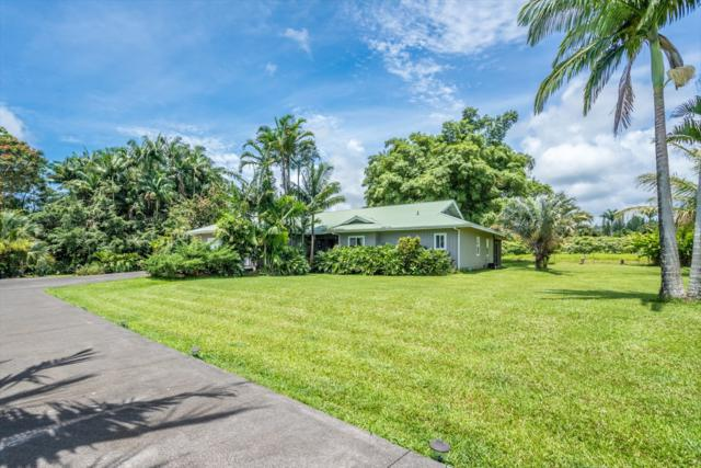 28-3181 Beach Rd, Pepeekeo, HI 96783 (MLS #618101) :: Aloha Kona Realty, Inc.
