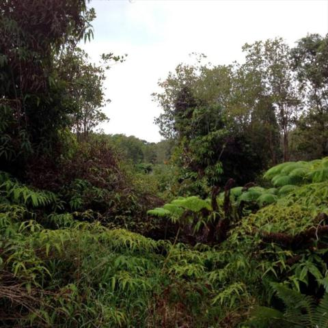 North Glenwood Road, Mountain View, HI 96771 (MLS #618210) :: Aloha Kona Realty, Inc.