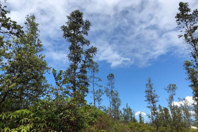 Emerald Dr, Pahoa, HI 96778 (MLS #618241) :: Elite Pacific Properties