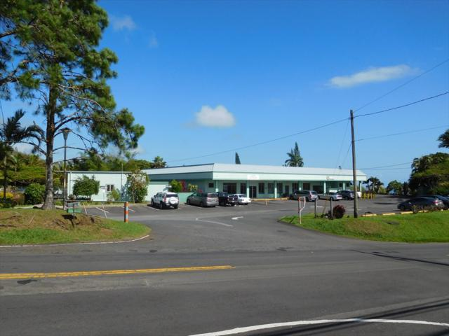 45-690 Pakalana St, Honokaa, HI 96727 (MLS #618259) :: Elite Pacific Properties
