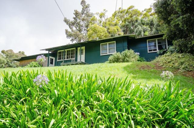 65-1247 Laelae Rd, Kamuela, HI 96743 (MLS #618292) :: Aloha Kona Realty, Inc.