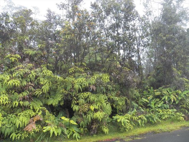 Ninth St, Volcano, HI 96785 (MLS #618303) :: Elite Pacific Properties