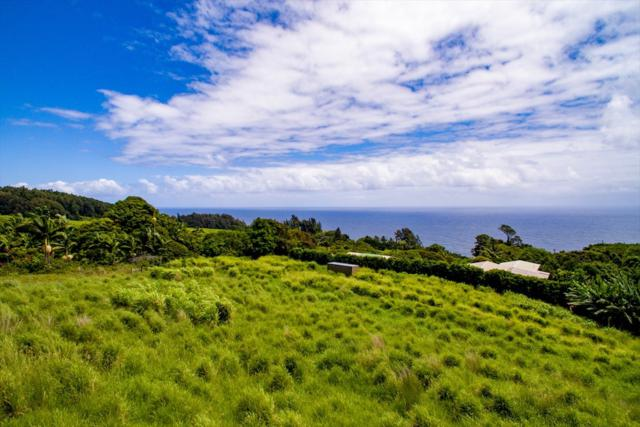 36-3326 Kuwili Lani Place, Laupahoehoe, HI 96764 (MLS #618323) :: Elite Pacific Properties