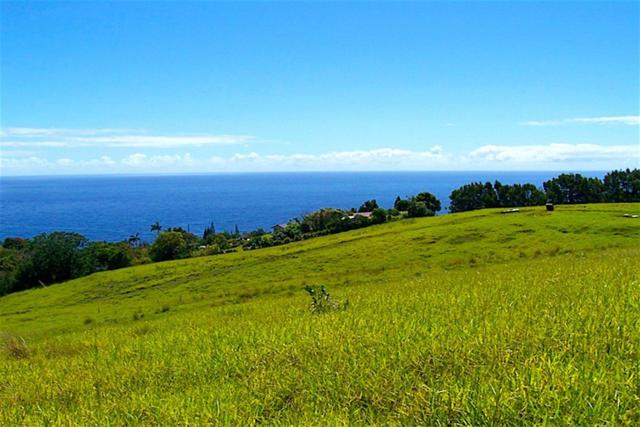 36-3352 Kuwili Lani Place, Laupahoehoe, HI 96764 (MLS #618332) :: Elite Pacific Properties