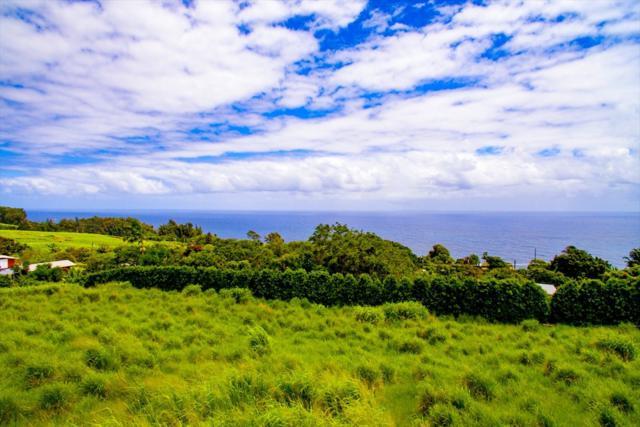 36-3349 Kuwili Lani Place, Laupahoehoe, HI 96764 (MLS #618353) :: Corcoran Pacific Properties