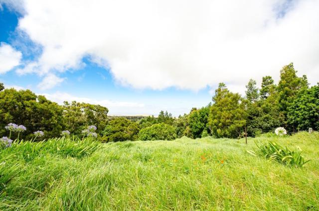 65-1253 Laelae Rd., Kamuela, HI 96743 (MLS #618378) :: Elite Pacific Properties