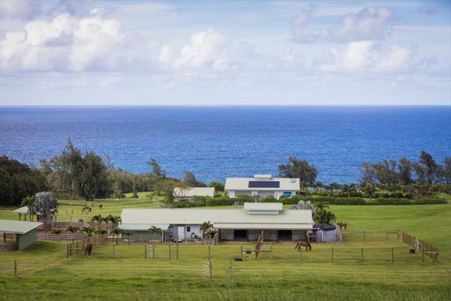 52-262 Niulii Pl, Kapaau, HI 96755 (MLS #618452) :: Elite Pacific Properties
